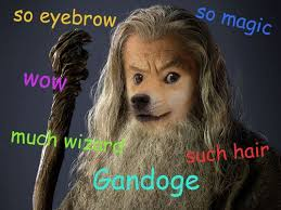 Top Doge Memes - hobbit meme ganfalf doge facts and other things pinterest