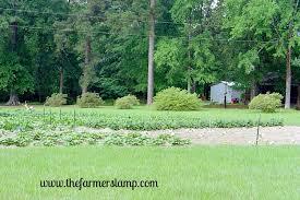 Us Zones For Gardening - basic gardening for u s growing zone 8