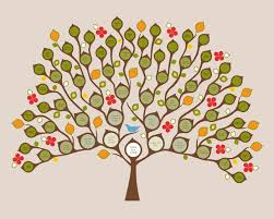 10 best family tree images on family trees family