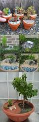 miniature garden designs 25 best ideas about miniature zen garden