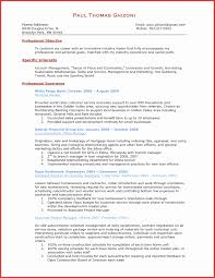 resume format sles sales experience resume format beautiful 13 inspirational