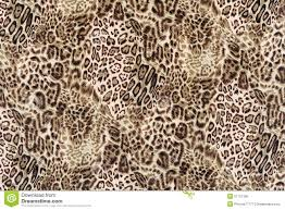 texture close up print fabric striped leopard stock photo