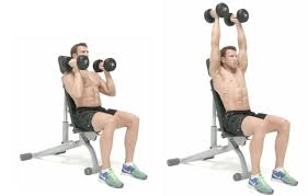 how to do the neutral grip seated shoulder press men u0027s health