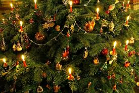 christmas tree 2008 1 рождество liechtenstein a photo on flickriver