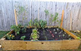 diy raised bed vegetable garden with recycle wood and wire trellis