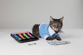 Cats Resume How To Build A Killer Accountant Resume By The Numbers Resume To