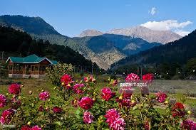 pahalgam u0027s scenic landscapes a tourist destination in kashmir