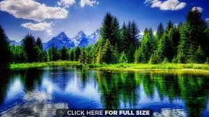 blue reflections wallpapers reflections nature tranquil beautiful trees wallpaper