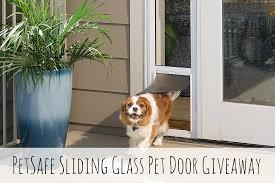 sliding glass door with doggie door petsafe sliding glass pet door giveaway pawsitively pets