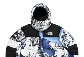 North Face Jacket Meme - supreme and north face really made the mountain mountain jacket