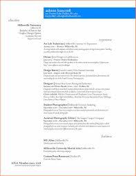 graphic design resume exles graphic artist resume pdf for graphic design resume exles