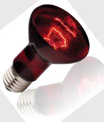 infrared heating lamp lighting and ceiling fans