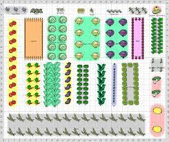 garden plan 2013 spring crop