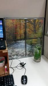 17 of the most creative cubicle decor you u0027ve ever seen