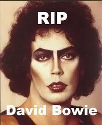 David Bowie Meme - rip david bowie picture ebaum s world