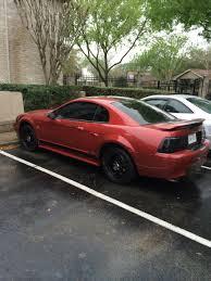 99 mustang bumper graphics mustang gloss black rear bumper accent