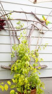 52 best trellises images on pinterest garden trellis trellis