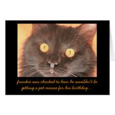 funny cat mouse birthday cards greeting u0026 photo cards zazzle