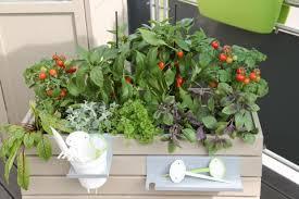 hochbeet balkon hochbeet für den balkon aufbauen und bepflanzen mein schöner garten