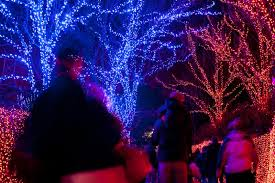 oregon zoo lights 2017 zoolights member preview night oregon zoo