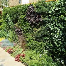 Family Garden Design Ideas 326 Best Images About Garden Ideas On Pinterest