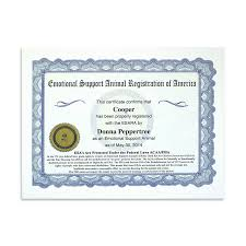 Blanket Certification Letter Products Archive The Official Esa Registration Of America