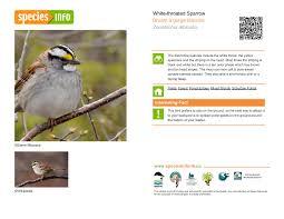 biodiversity cards nature nb