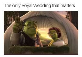 Funny Couples Memes - pin by juli saitz on lol pinterest shrek netflix and memes