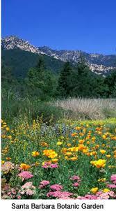 Botanic Garden Santa Barbara Sbbg1 Jpg