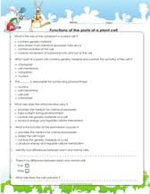 plant and animal cells worksheets games quizzes for kids