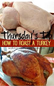 how to roast the turkey for thanksgiving cooking tips