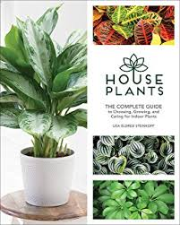 indoor plants the essential guide to choosing and caring for
