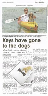 australian shepherd kayaking lazy dog key west kayak and paddleboard tours rentals and more