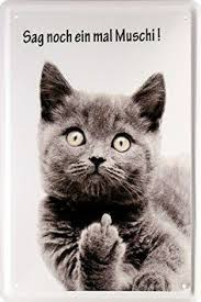 s e katzen spr che opas adolf katze lustige katzenbilder