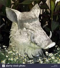 pig boar tusk tusker snout ear porker pork garden ornament