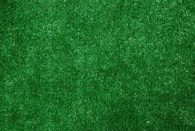 Fake Grass Outdoor Rug Dean Indoor Outdoor Artificial Grass Rug 9 U0027 X 12 U0027