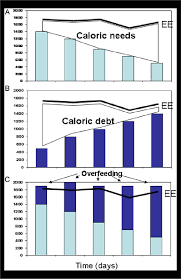pattern energy debt imaginary exle of energy expenditure caloric needs and debt in