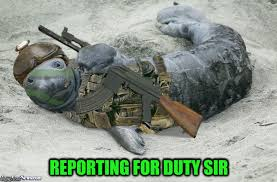 Funny Navy Memes - navy seal reporting for duty imgflip