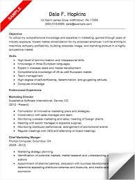 Resume Promotion Director Resume Sample