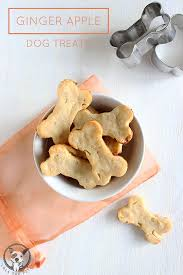 ginger ginger apple dog treat recipe lola the pitty
