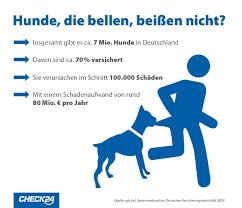 Check24 Haus Kaufen Hundehaftpflicht Die Häufigsten Schadensfälle Check24