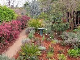 Desktop Rock Garden Misc Maple Rock Gardens Colorful Flowers California Newcastle
