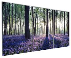 Modern Wall Art Amazon Com Gardenia Art Purple Flowers Between Woods Canvas