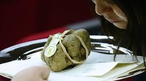 vente aux encheres cuisine onze truffes blanches vendues aux enchères pour 274 200 euros l