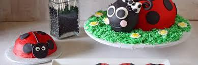 Ladybug Kitchen Decor Ladybug Party Cake Cookies Cake Pops U0026 Smash Cake