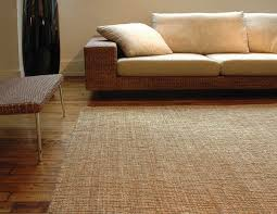 easy tips how to clean up your beautiful jute rugs without being