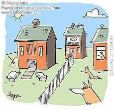 Backyard Cartoon Funny Chicken Cartoons Backyard Chickens