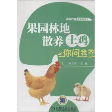 buy woodland stocking chicken new technology selling books genuine