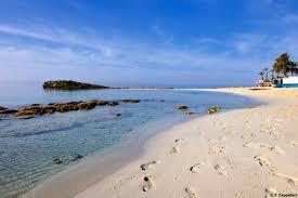 Blue Flag Beach Beaches Filming In Cyprus
