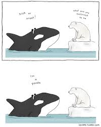 marine city halloween when a whale goes trick or treating what does it wear panda